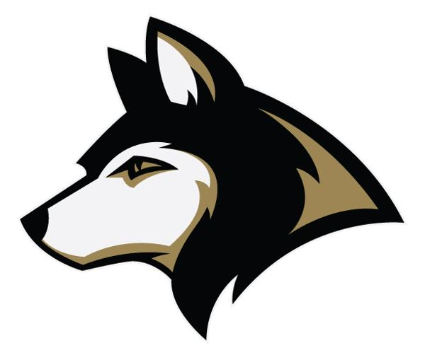 Andover-Girls-Hockey-Logo_large (002)