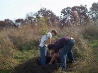 Kids planting a native tamarack tree at a park