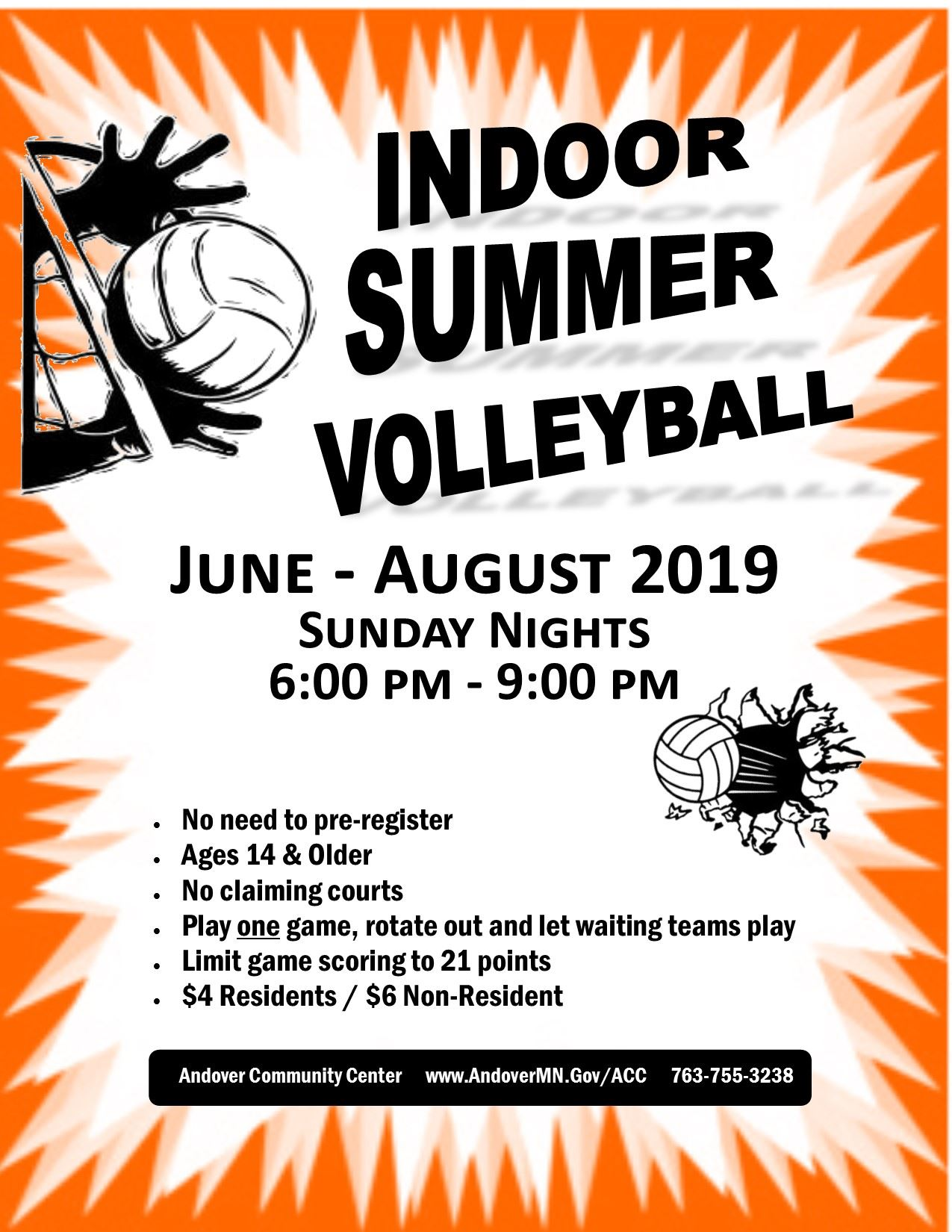 volleyball flyer 2019 Summer